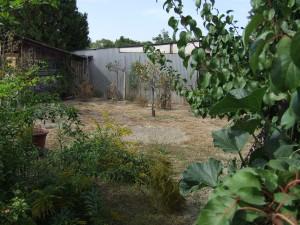 Fúrt kút néküli kert